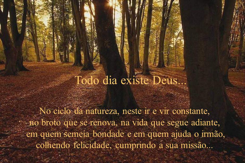 Todo dia existe Deus... No ciclo da natureza, neste ir e vir constante, no broto que se renova, na vida que segue adiante,