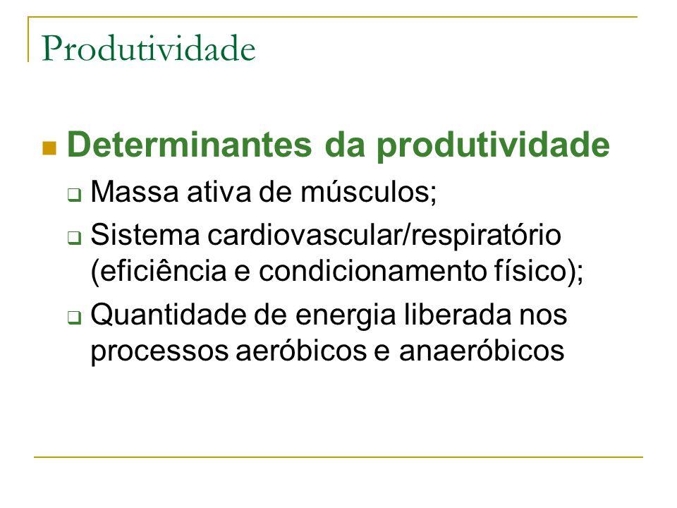 Produtividade Determinantes da produtividade Massa ativa de músculos;