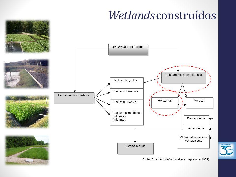 Wetlands construídos Fonte: Adaptado de Vymazal e Kroepfelová (2008)