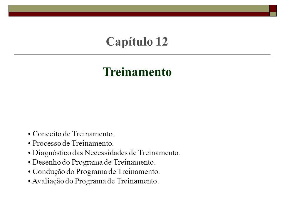 Capítulo 12 Treinamento Conceito de Treinamento.