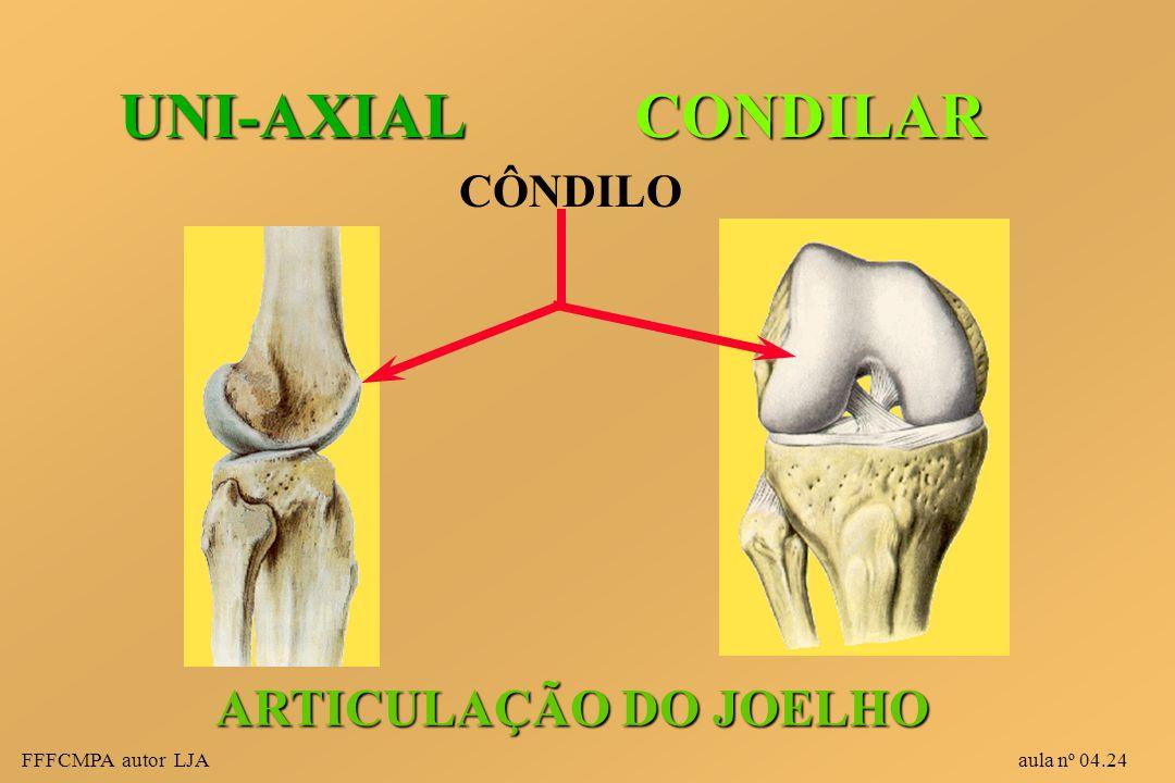 UNI-AXIAL CONDILAR ARTICULAÇÃO DO JOELHO CÔNDILO