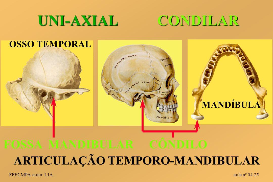 UNI-AXIAL CONDILAR FOSSA MANDIBULAR CÔNDILO