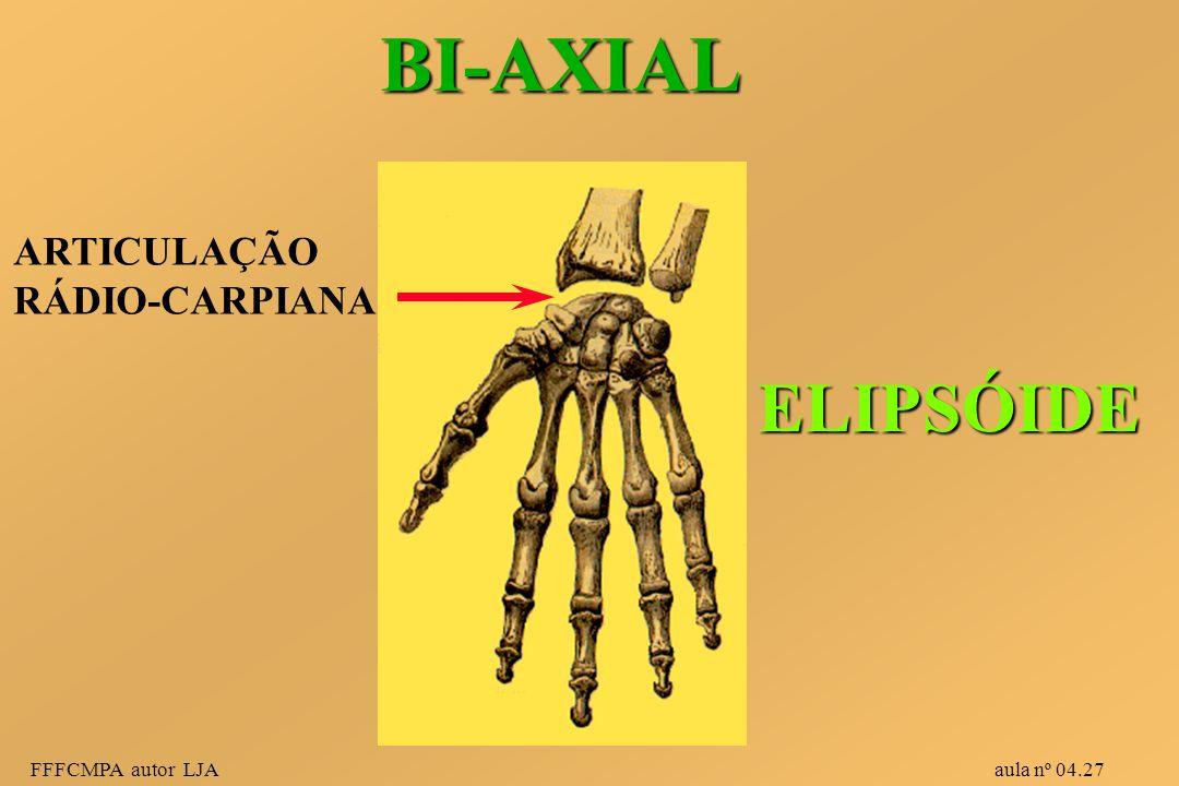 BI-AXIAL ELIPSÓIDE ARTICULAÇÃO RÁDIO-CARPIANA