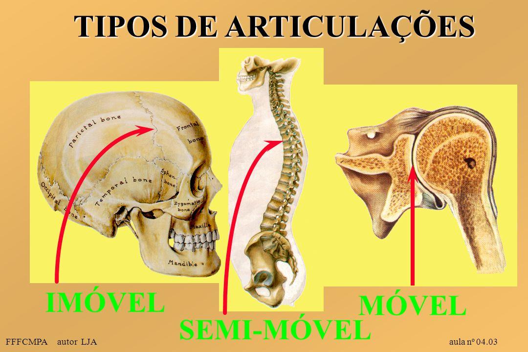 TIPOS DE ARTICULAÇÕES IMÓVEL MÓVEL SEMI-MÓVEL