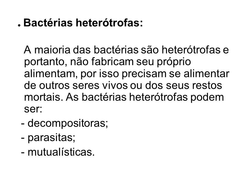 . Bactérias heterótrofas: