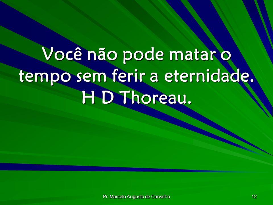 Você não pode matar o tempo sem ferir a eternidade. H D Thoreau.