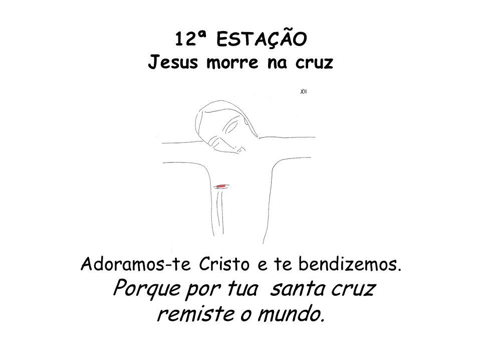 12ª ESTAÇÃO Jesus morre na cruz Adoramos-te Cristo e te bendizemos