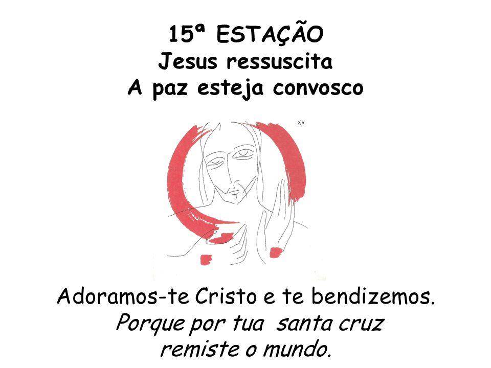 15ª ESTAÇÃO Jesus ressuscita A paz esteja convosco Adoramos-te Cristo e te bendizemos.