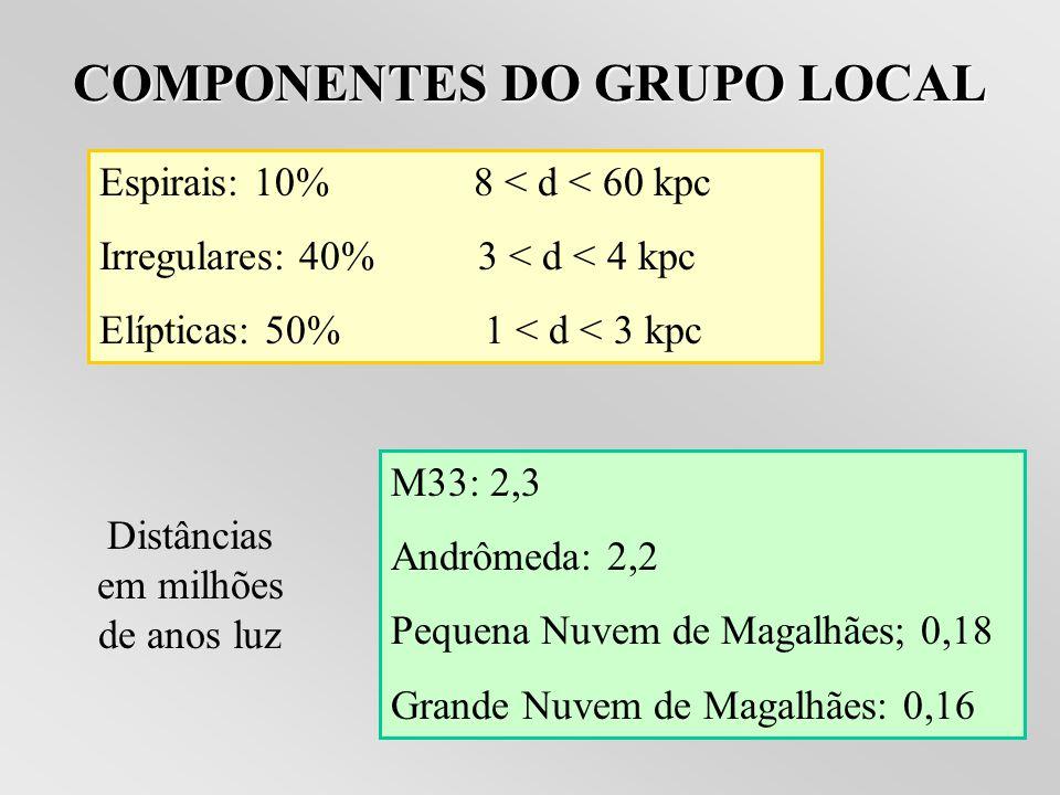 COMPONENTES DO GRUPO LOCAL
