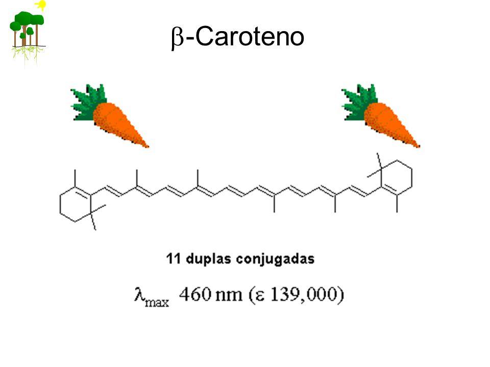b-Caroteno
