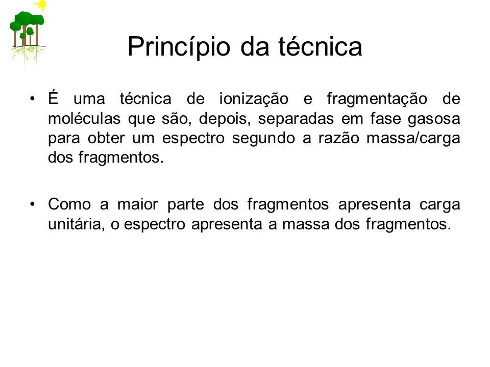 Princípio da técnica
