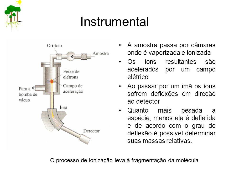 Instrumental A amostra passa por câmaras onde é vaporizada e ionizada