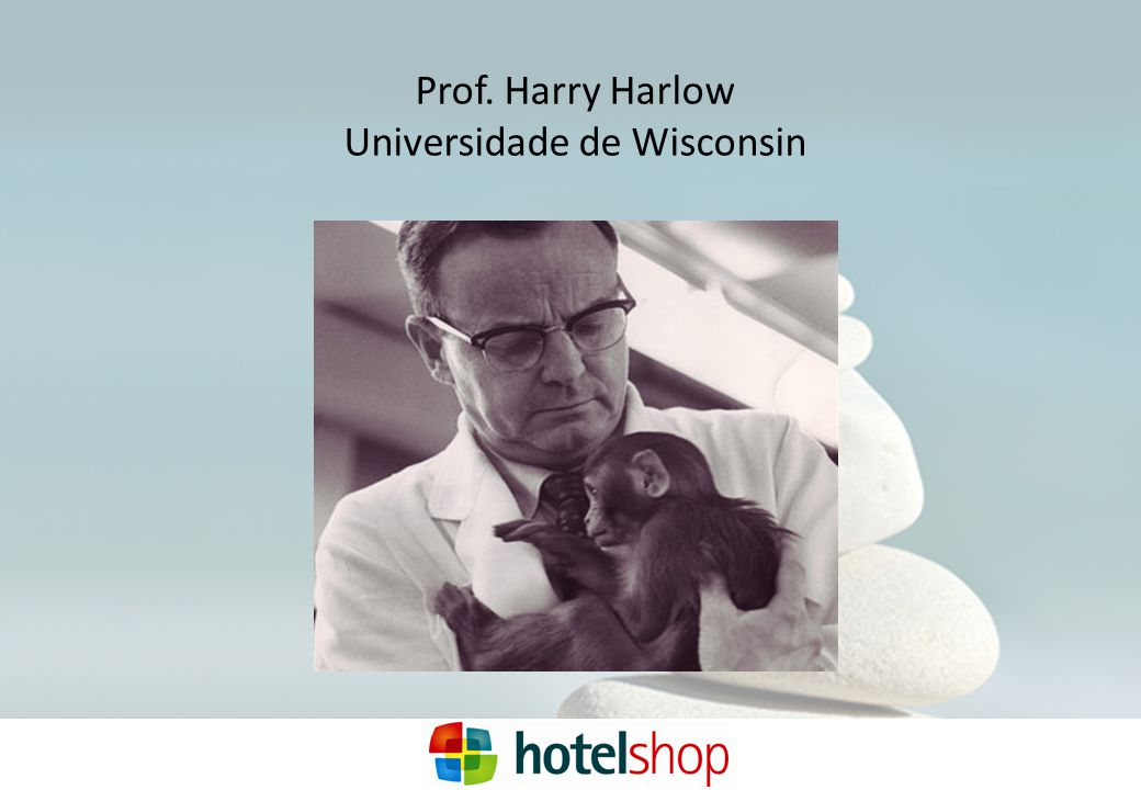 Prof. Harry Harlow Universidade de Wisconsin