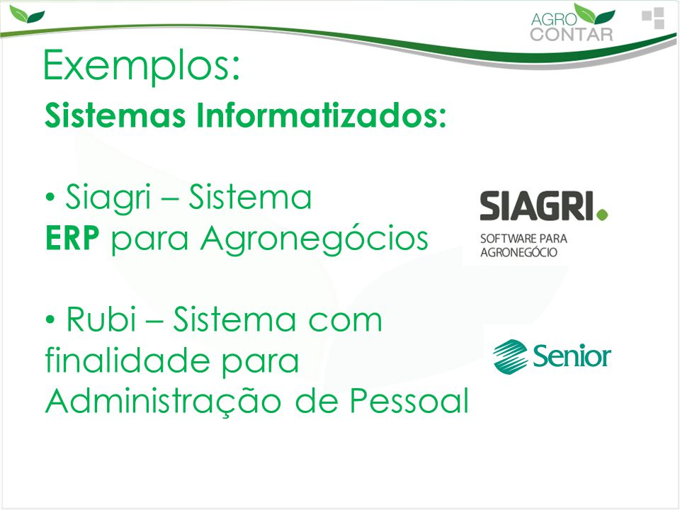 Exemplos: Sistemas Informatizados: Siagri – Sistema