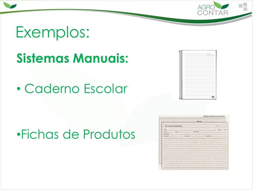 Exemplos: Sistemas Manuais: Caderno Escolar Fichas de Produtos