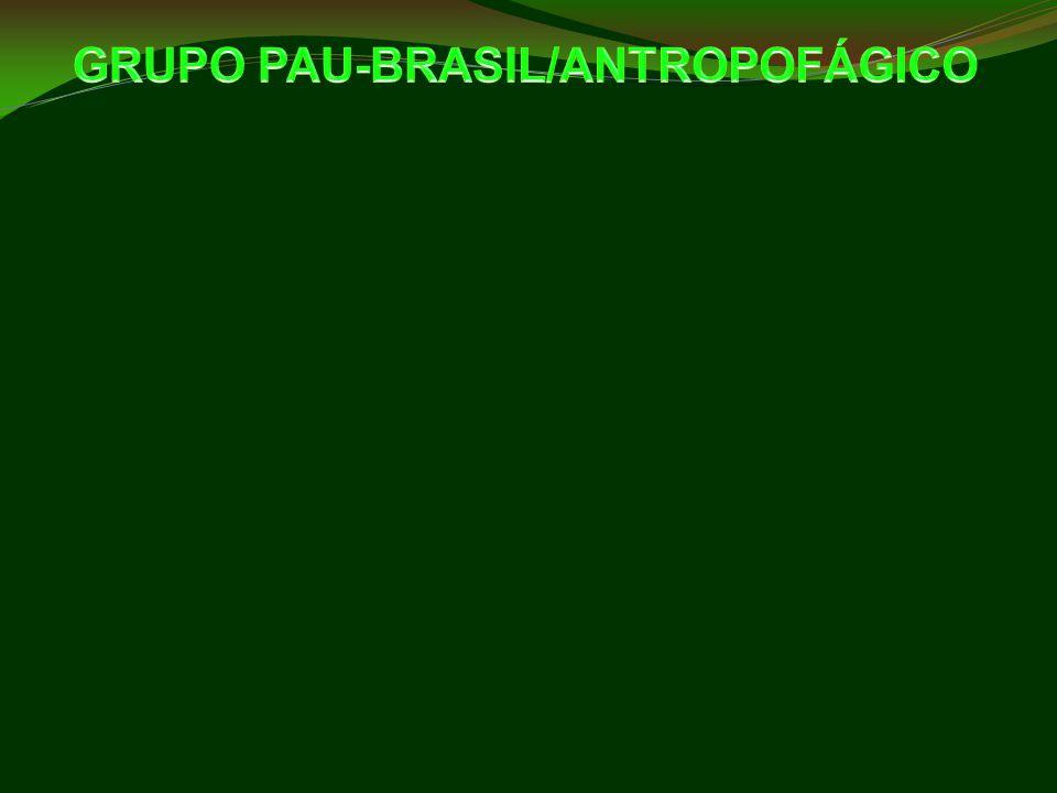 GRUPO PAU-BRASIL/ANTROPOFÁGICO