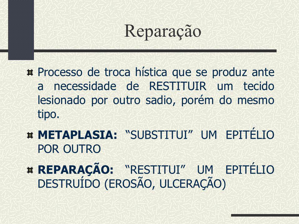 Reparação Processo de troca hística que se produz ante a necessidade de RESTITUIR um tecido lesionado por outro sadio, porém do mesmo tipo.