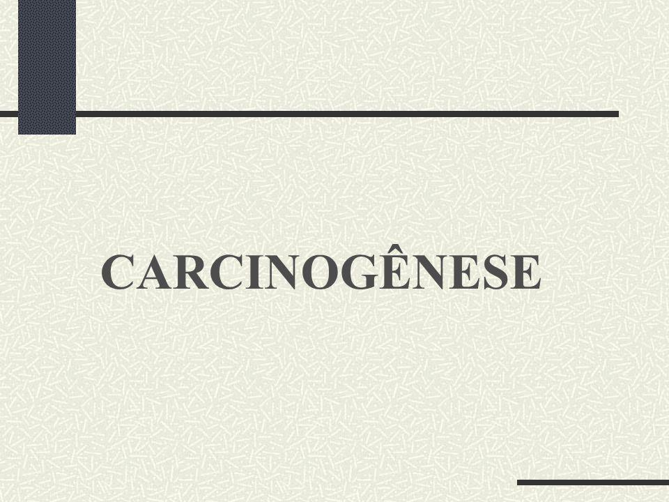 CARCINOGÊNESE