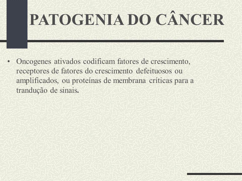 PATOGENIA DO CÂNCER