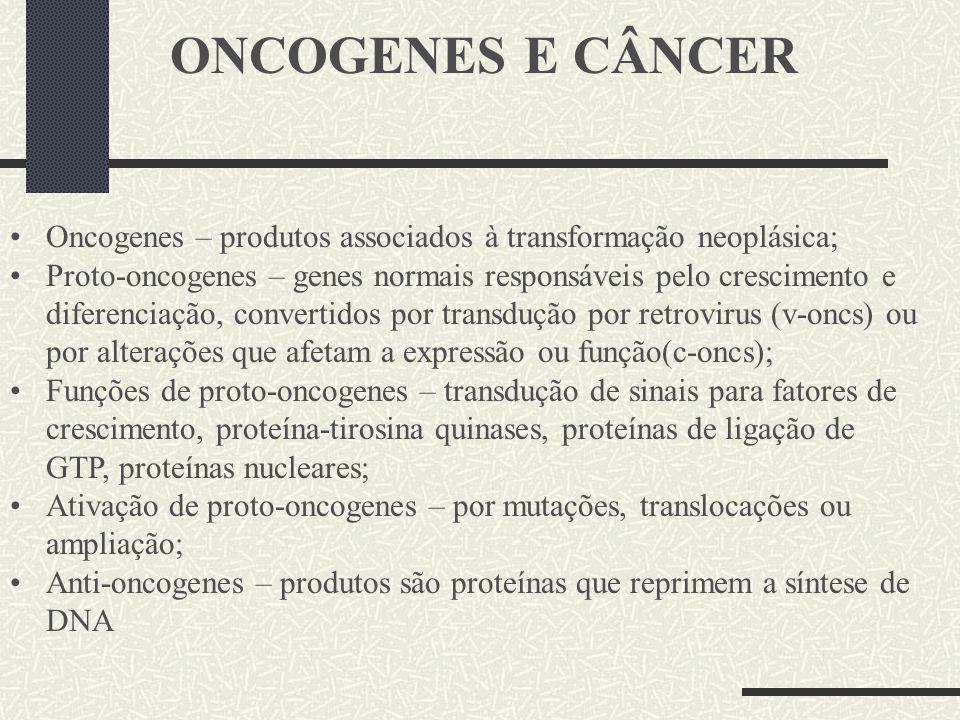 ONCOGENES E CÂNCER Oncogenes – produtos associados à transformação neoplásica;