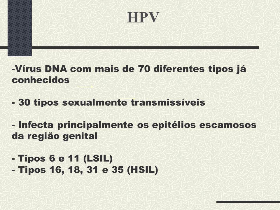 HPV Vírus DNA com mais de 70 diferentes tipos já conhecidos