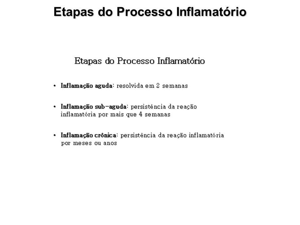 Etapas do Processo Inflamatório