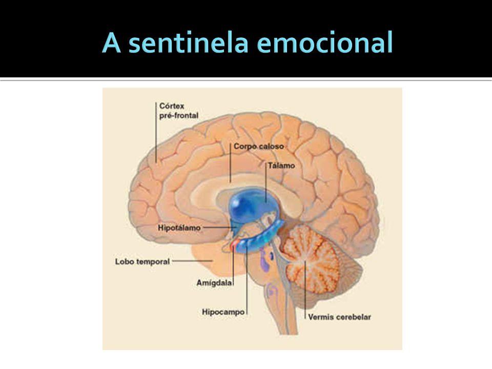 A sentinela emocional