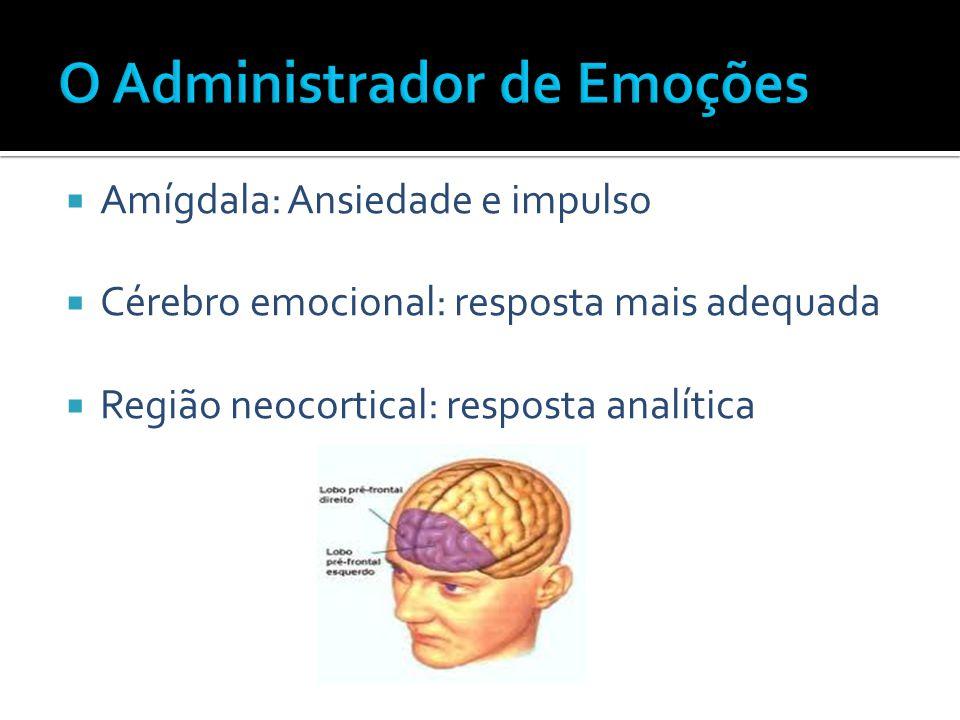 O Administrador de Emoções