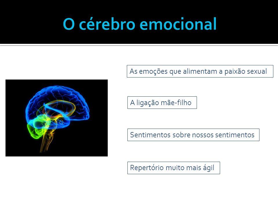 O cérebro emocional As emoções que alimentam a paixão sexual