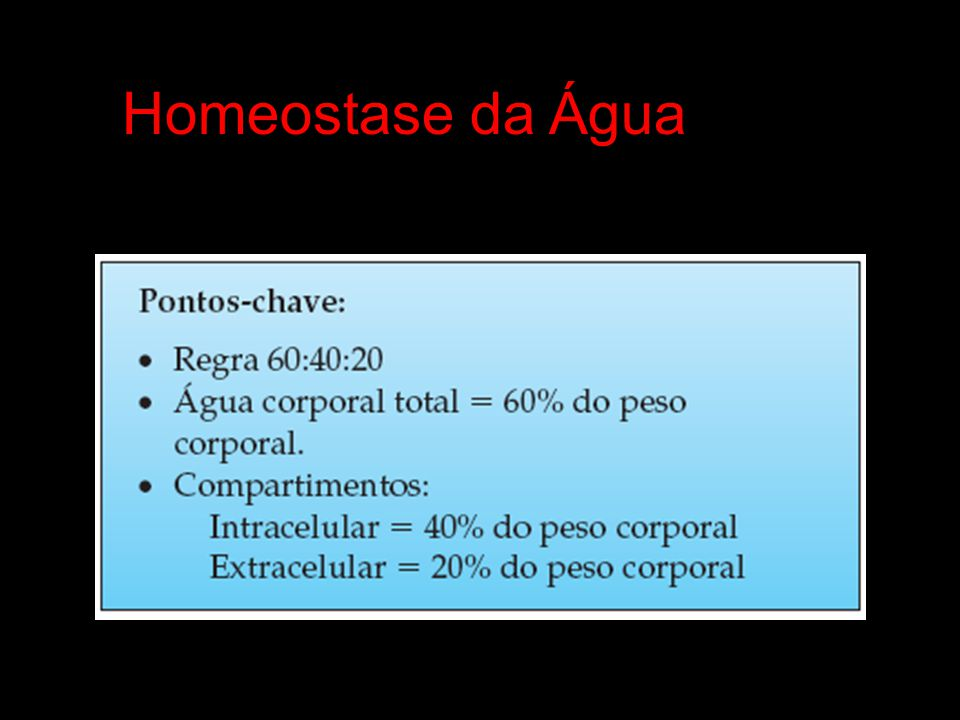 Homeostase da Água