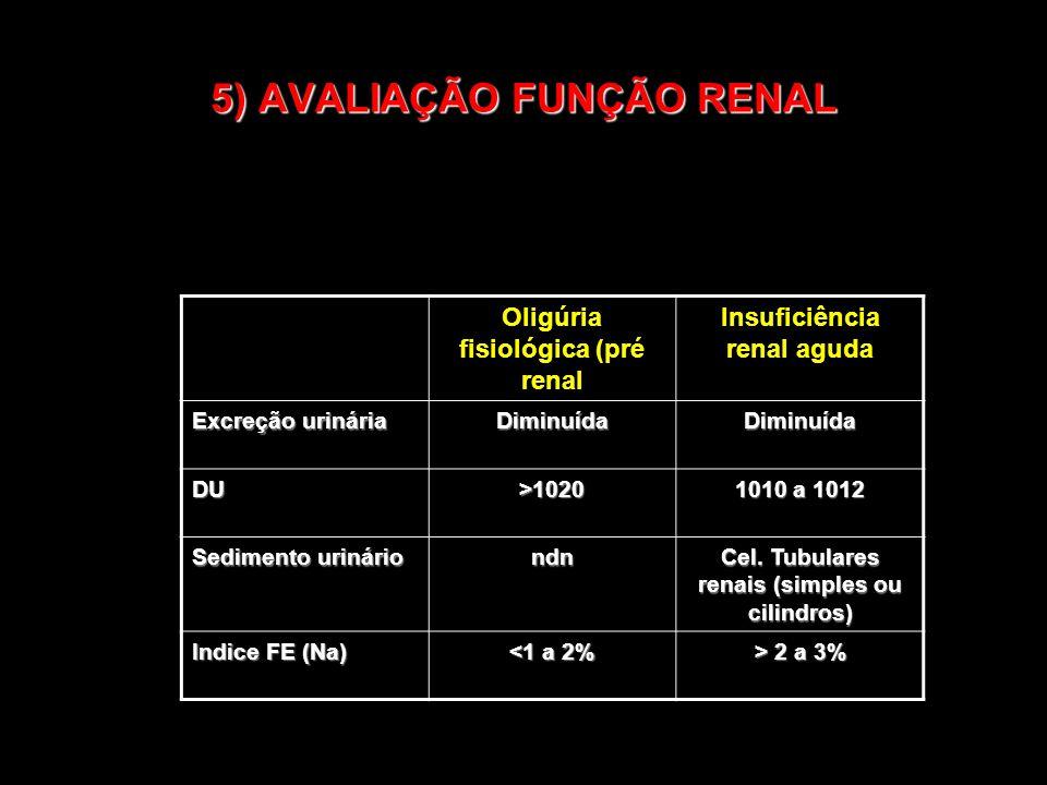 5) AVALIAÇÃO FUNÇÃO RENAL