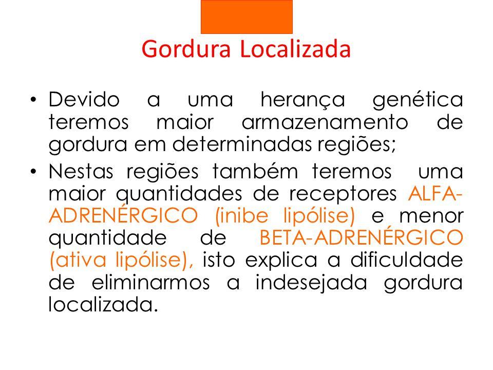 Gordura Localizada Devido a uma herança genética teremos maior armazenamento de gordura em determinadas regiões;