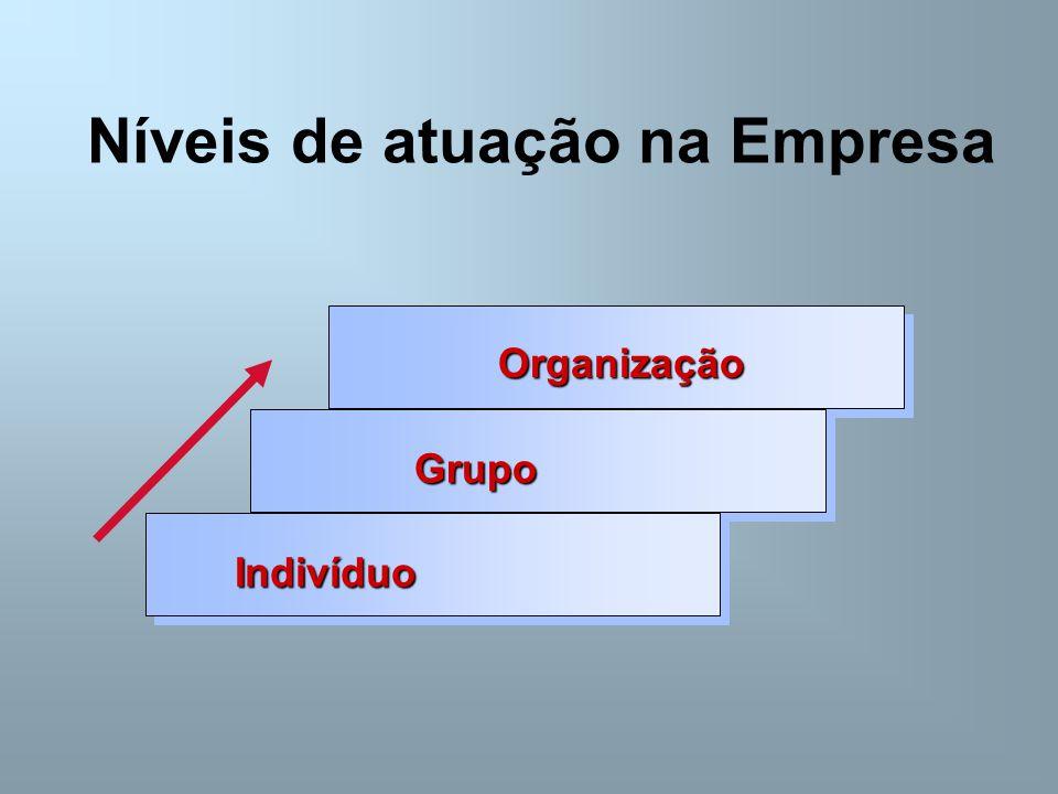 Níveis de atuação na Empresa