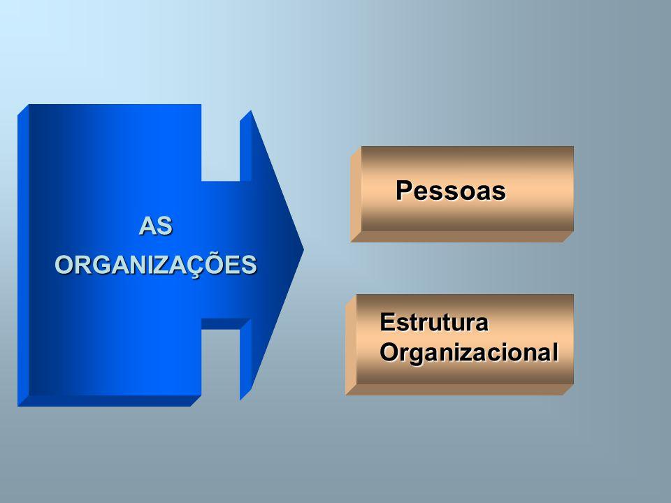 AS ORGANIZAÇÕES Pessoas Estrutura Organizacional