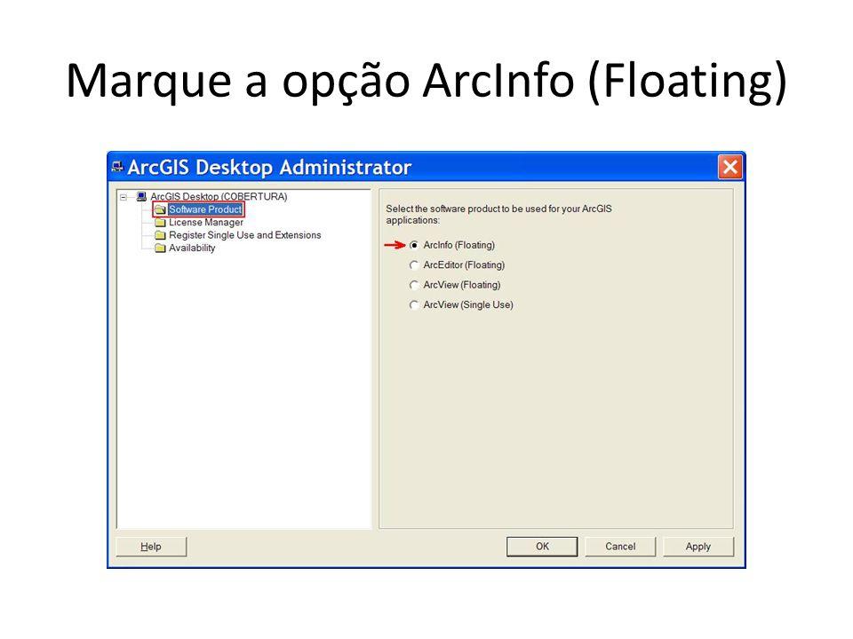 Marque a opção ArcInfo (Floating)
