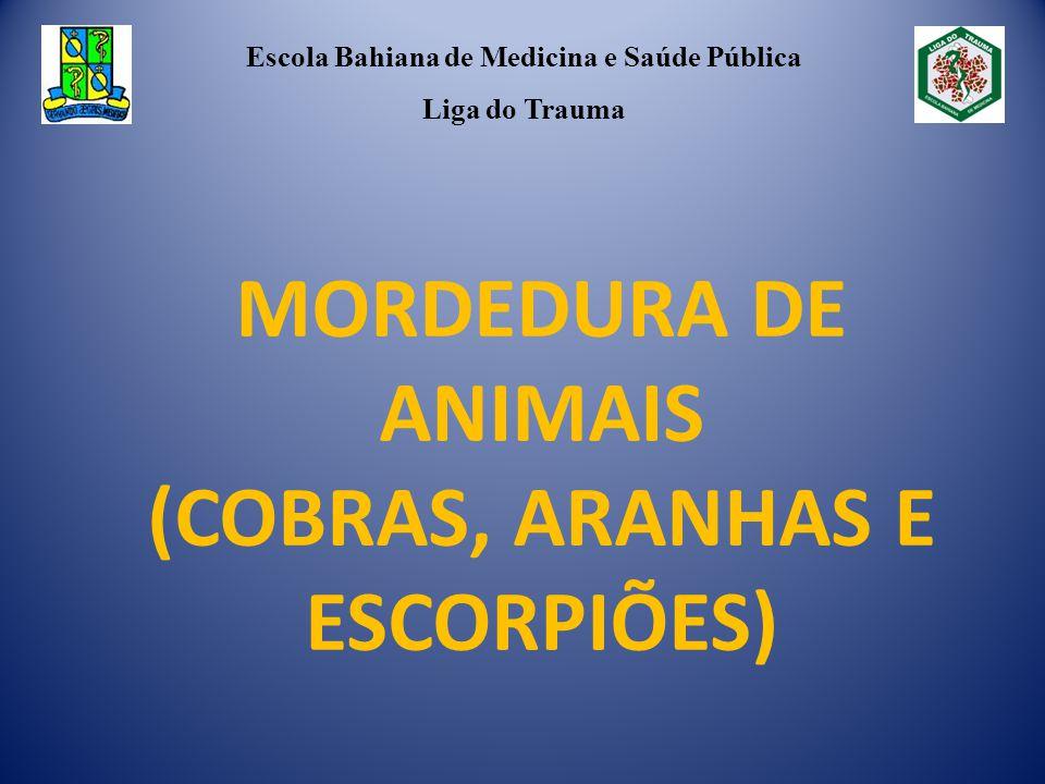 MORDEDURA DE ANIMAIS (COBRAS, ARANHAS E ESCORPIÕES)