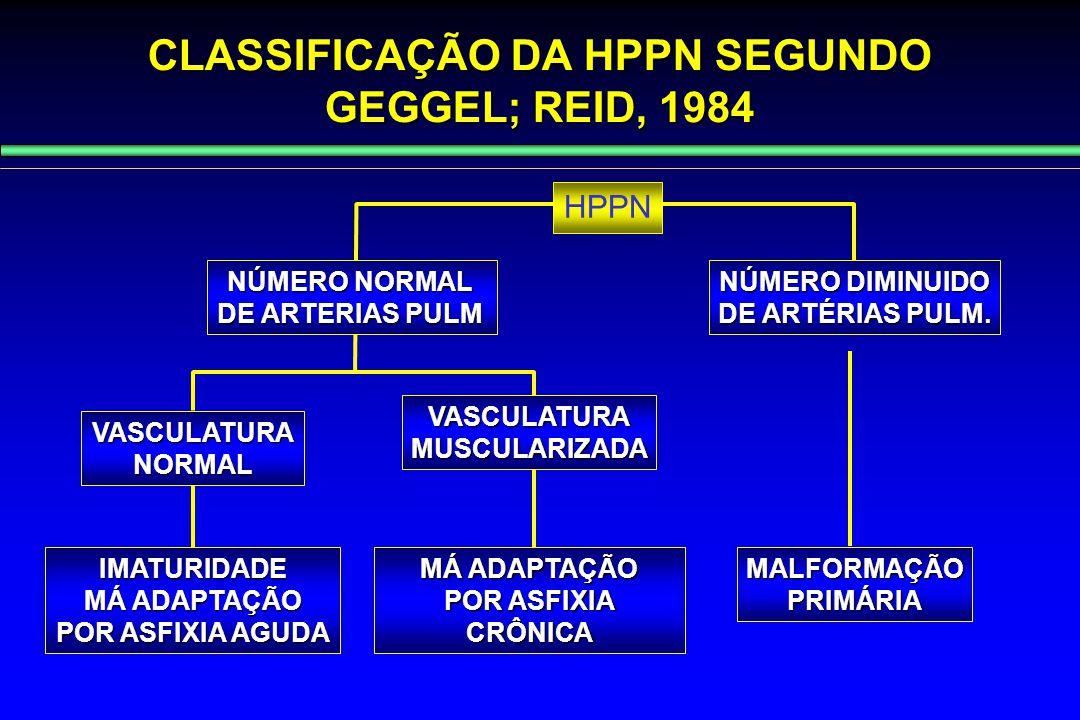 CLASSIFICAÇÃO DA HPPN SEGUNDO GEGGEL; REID, 1984