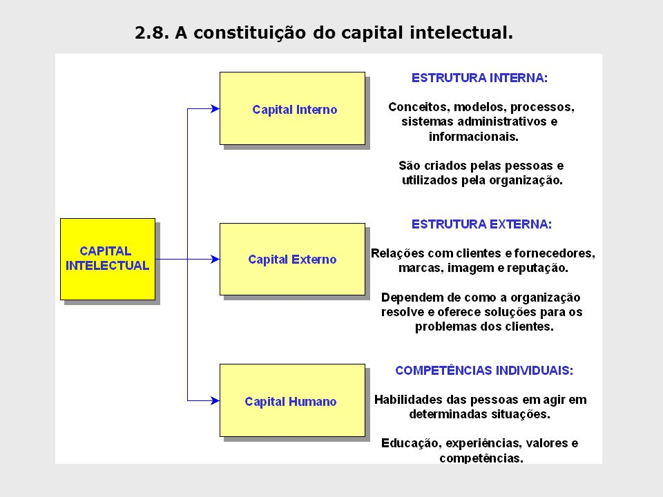 2.8. A constituição do capital intelectual.