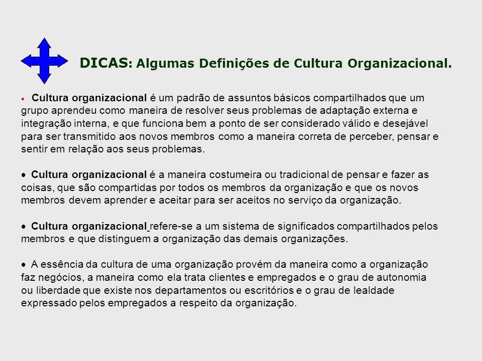 DICAS: Algumas Definições de Cultura Organizacional.