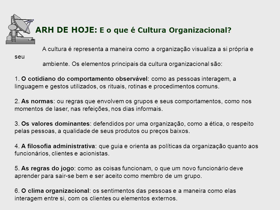 ambiente. Os elementos principais da cultura organizacional são: