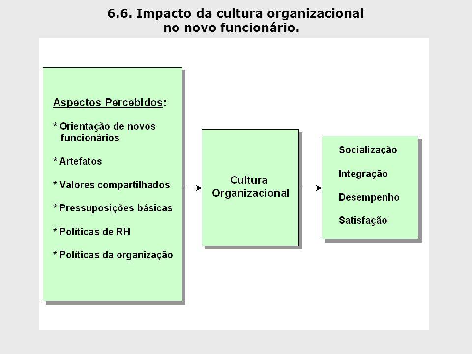 6.6. Impacto da cultura organizacional