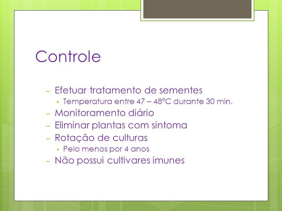 Controle Efetuar tratamento de sementes Monitoramento diário