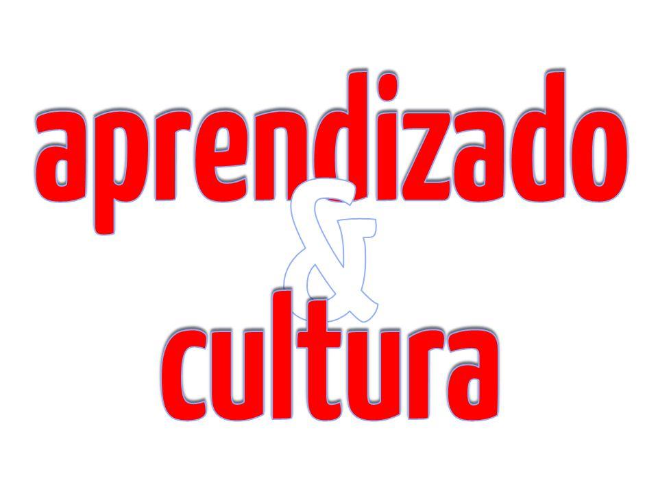 aprendizado & cultura