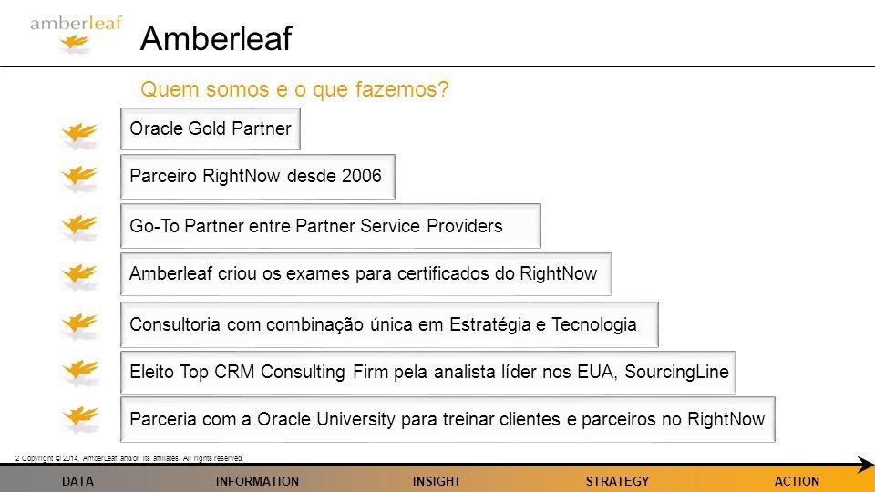 Amberleaf Quem somos e o que fazemos Oracle Gold Partner