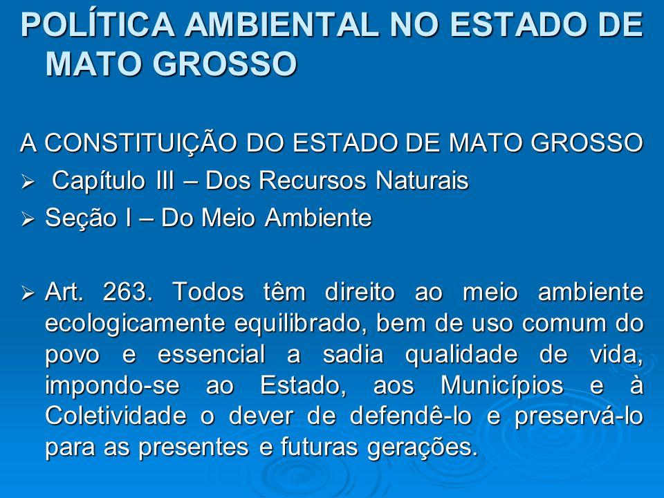 POLÍTICA AMBIENTAL NO ESTADO DE MATO GROSSO