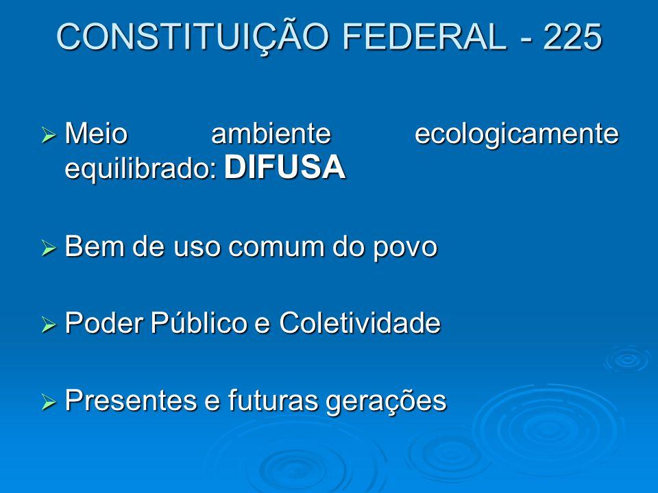 CONSTITUIÇÃO FEDERAL - 225