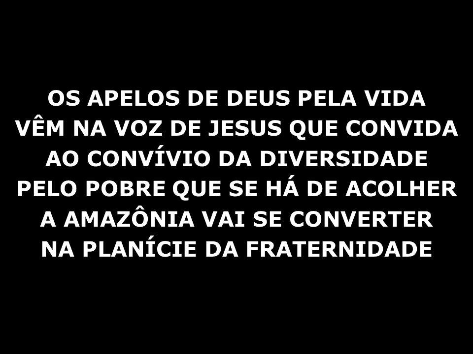 OS APELOS DE DEUS PELA VIDA VÊM NA VOZ DE JESUS QUE CONVIDA