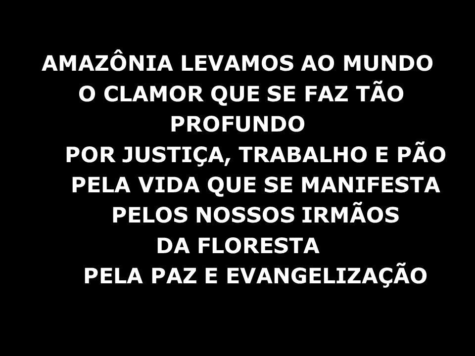 AMAZÔNIA LEVAMOS AO MUNDO O CLAMOR QUE SE FAZ TÃO PROFUNDO
