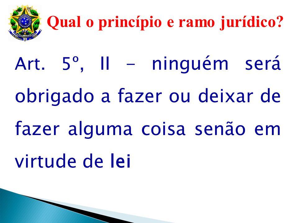 Qual o princípio e ramo jurídico
