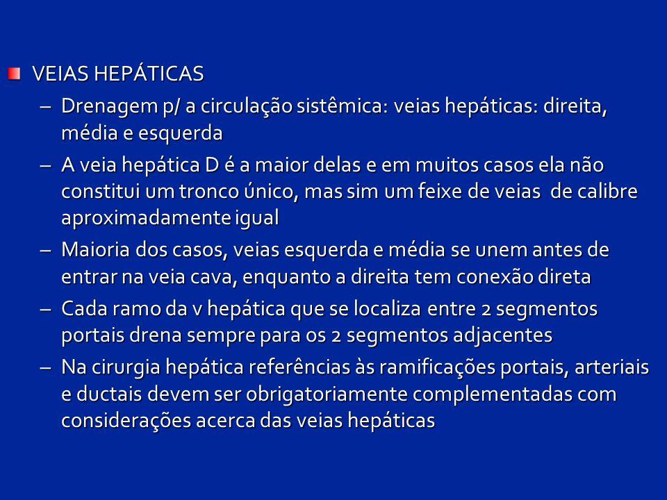 VEIAS HEPÁTICAS Drenagem p/ a circulação sistêmica: veias hepáticas: direita, média e esquerda.